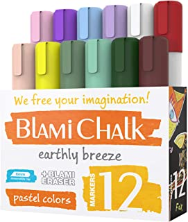 Blami Arts Chalk Markers and Chalkboard Labels Pack -14 Erasable Liquid Ink Pens - Non Toxic Extra Gold and Silver Colors Included - Reversible Tips and Erasnig Sponge (12 Chalk Malkers set pastel)