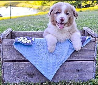 Puppy Blanket, Personalized Dog Blanket, Gray Paw Print Blanket, Puppy Gift, Dog Christmas Gift, personalized dog blanket, Dog Crate Blanket, Baby Blue Puppy Dog