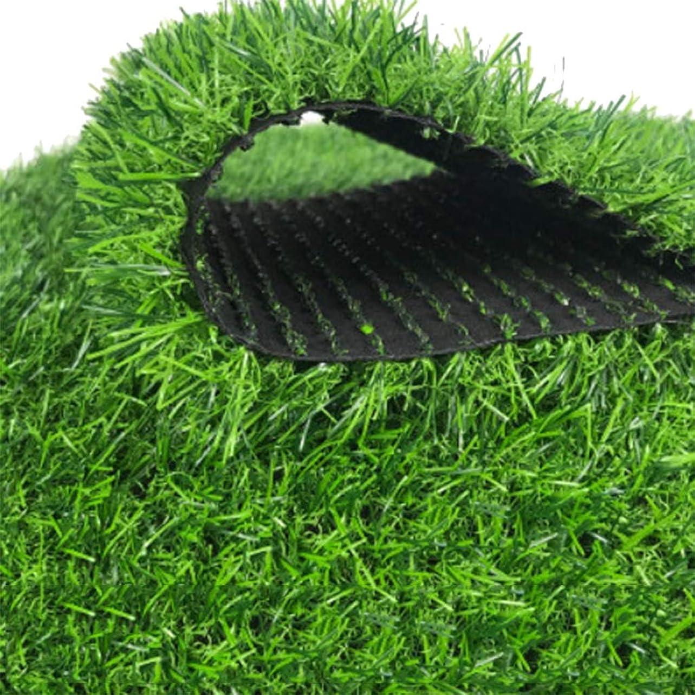 意図的貧しい身元YNFNGXU 30mmパイル高人工芝、暗号化された模造マットマット屋外バルコニー屋根排水穴付き合成草カーペット (Size : 2x1.5m)