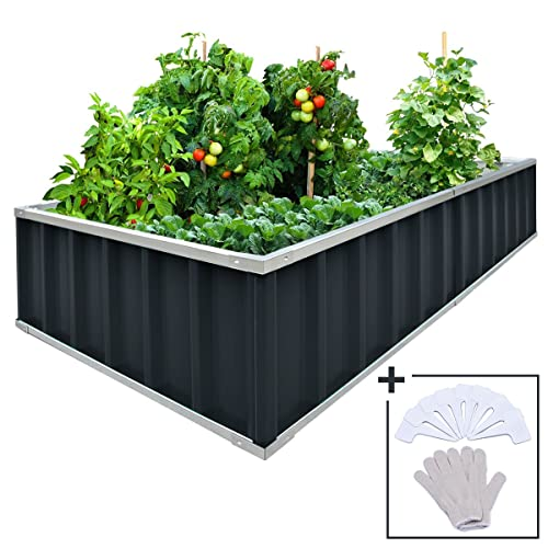 Raised Garden Bo: Amazon.com on