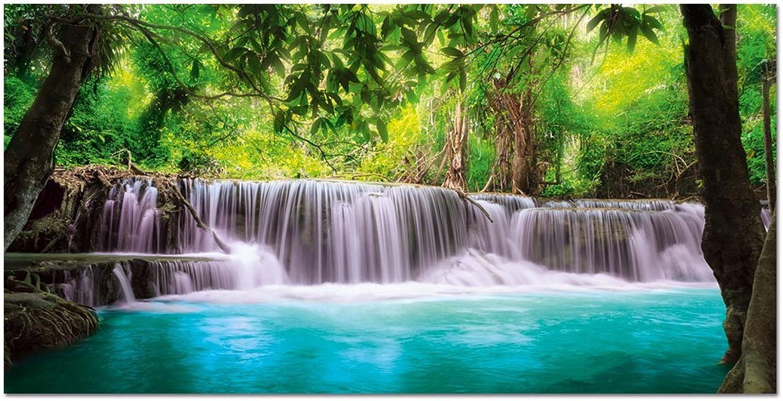 Wildnis Der In Wasserfall Mit Wandbild Acryl Aus Glasbild