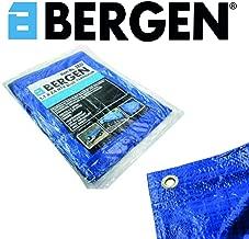 Bergen 4 Piece 25mm x 5 Meters Ratchet Tie Down Set B2895