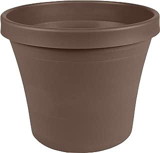 Best flower pots online shopping Reviews