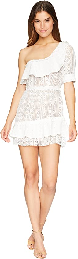 Lovebird Lace Mini Dress