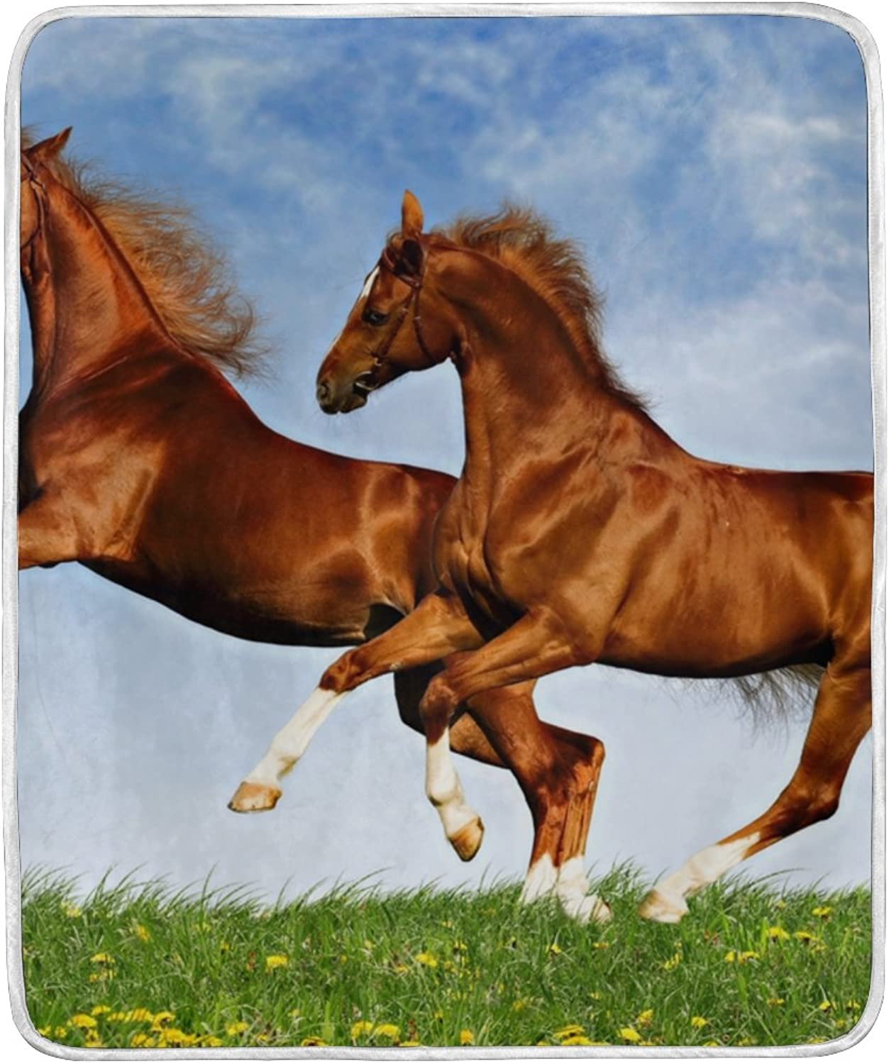 ALIREA Two Horses Frolic On The Plain Super Soft Warm Blanket Lightweight Throw Blankets for Bed Couch Sofa Travelling Camping 60 x 50 Inch for Kids Boys Girls