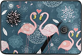 COOSUN Flamingos Doormat, Entry Way Indoor Outdoor Door Rug with Non Slip Backing, (23.6 by 15.7-Inch)
