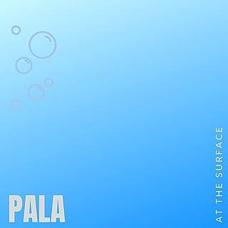 Amazon.com: pala