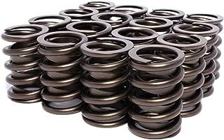 Best comp 911 16 valve springs Reviews