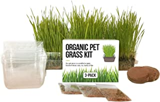 Cat Grass Growing Kit - 3 Pack Organic Seed, Soil and BPA Free containers (Non GMO). All of Our Seed is Locally sourced for pet and pet Lovers.