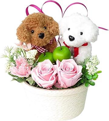 花 誕生日プレゼント 女性 彼女人気 花ギフト フラワーアレンジメント トイプードルのペア