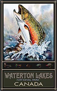 Brook Trout Waterton Lakes Park Canada Travel Art Print Poster by Dave Bartholet (12