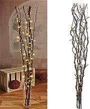 Ysoom LED Lichterzweige Dekoleuchte Dekozweige Lichterzweige 20 LEDs Lichter Zweige Lichterbaum LED Baum Lichterzweig Dekobeleuchtung f/ür Innen Au/ßen