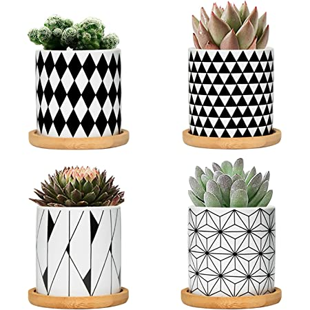 Amazon Com Fairylavie 3 Inch Ceramic Little Pots For Plants Geometric Pattern Succulent Plant Pots Planters With Bamboo Tray Perfect For Home Office Decor And Ideal Gift For Family Friends Colleague Set Of