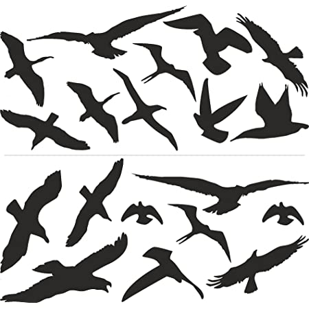 Vogelschutz Und Fensterschutz 19er Set Vogel Aufkleber Warnvögel Wetterfest Sehr Gross