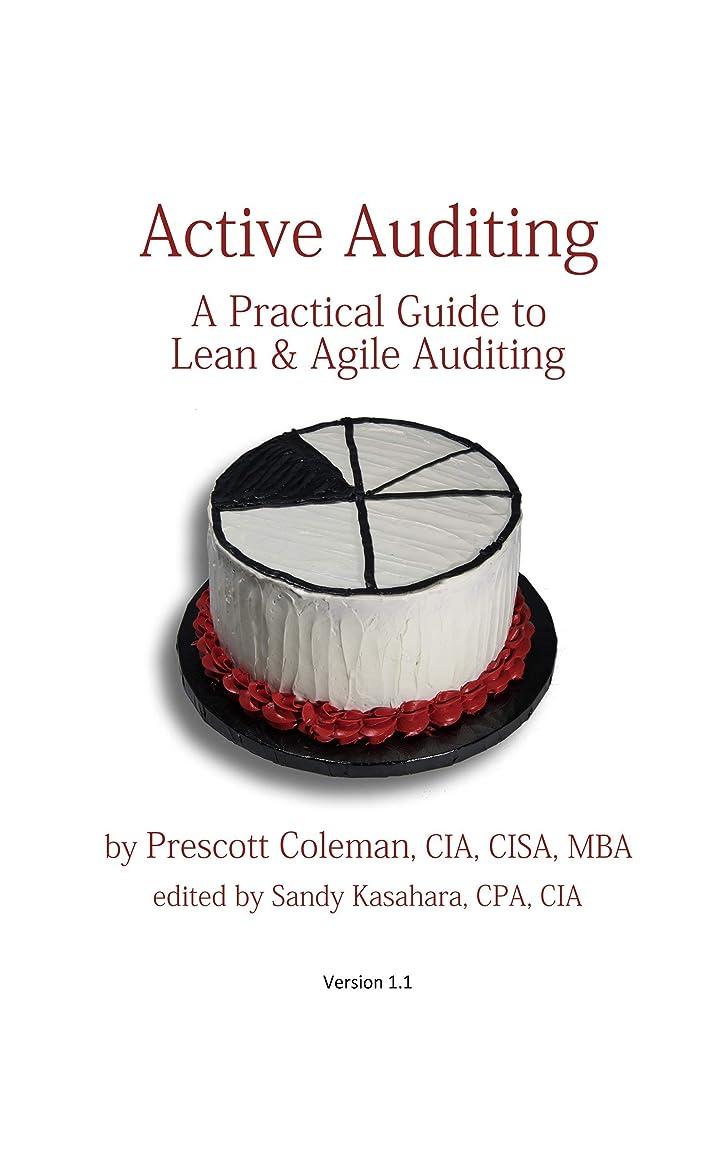 効能砲撃首謀者Active Auditing - A Practical Guide to  Lean & Agile Auditing (English Edition)
