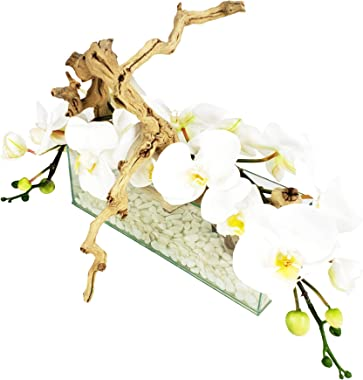 D&D Inspiration Phalaenopsis Orchid and Natural Wood Floral Arrangement in Rectangular Vase