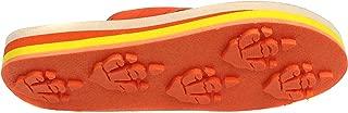 Animal Traks FLIP Flops Slippers- Dinosaur Print Sandals for Girls and Boys, Little Kids (Age 4 – 8).