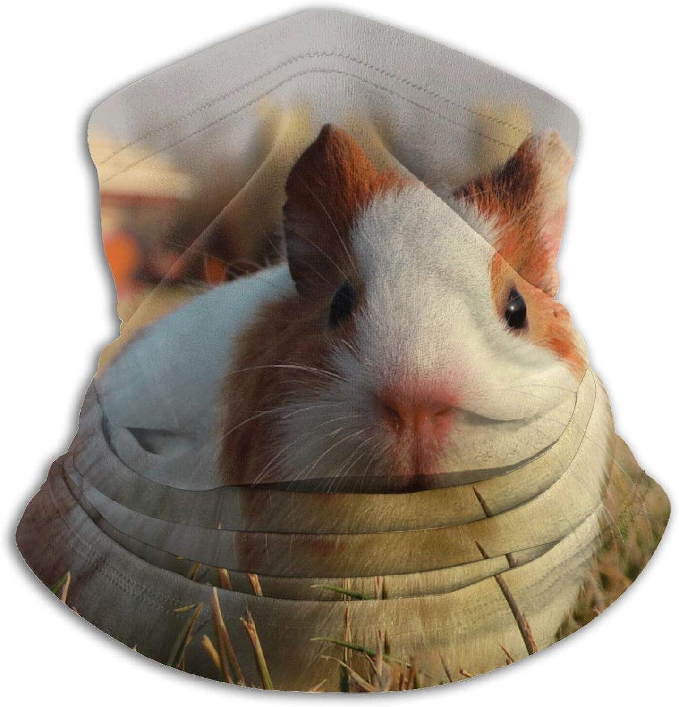 Winter Neck Gaiter Warmer Soft Face Mask Scarf Guinea Pig Outdoor Sports Neck Warmer Headwear for Men Women Black