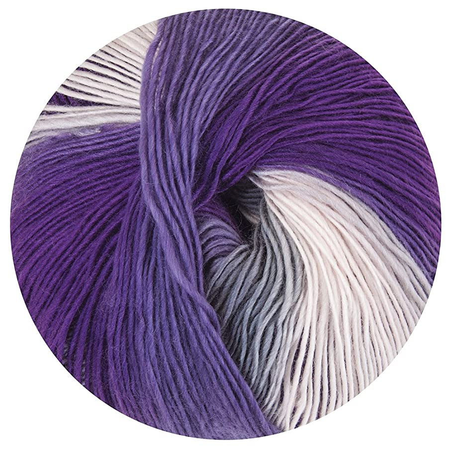 Mary Maxim 161-2028 Prism Yarn-Iris