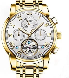 Aesop Luxury Skeleton Men Day Date Analog Automatic Self Winding Mechanical Wrist Watch with Steel Band Luminous Waterproof Gold White