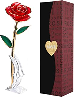 Gold Dipped Rose, Long Stem 24K Gold Rose with Transparent Stand Real Forever Rose for Girlfriend Gifts,Valentine's Day, Mother's Day,Birthday, Anniversary, Wedding Red Rose Flower