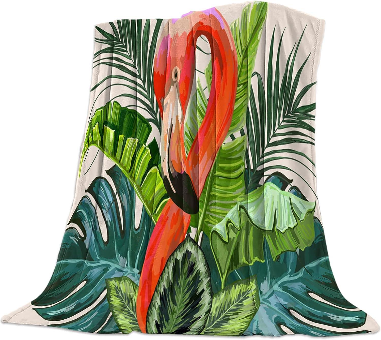 SODIKA Flannel Fleece Bed Blanket Max 69% OFF Plush Rare Fuzzy Light Throw