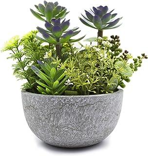 KELZIA Planta Artificial - 1 Maceta con Decoraciones de Plantas Falsas - Escritorio de Oficina, Mesa, Ventanas, Repisas, C...