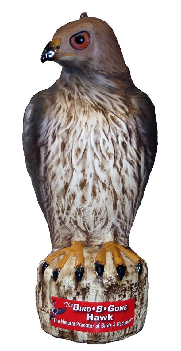 Bird B Gone INC MMRTH1 Decoy Hawk - 2