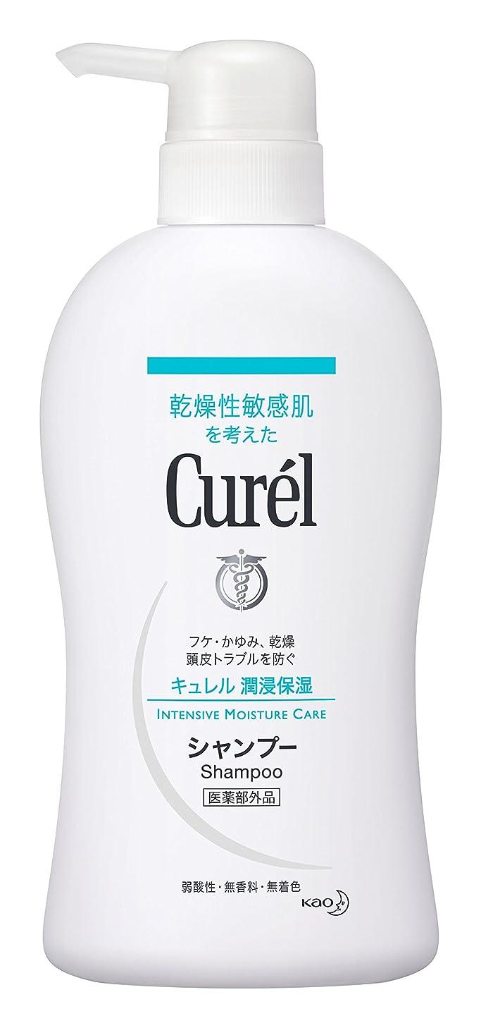 廃止するカロリー触覚花王 キュレル シャンプー 本体 420ml