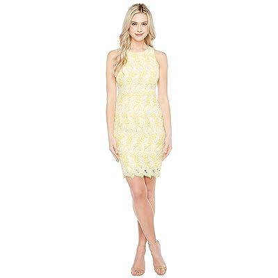 Maggy London Star Flower Lace Scalloped Sheath Dress (Yellow/White) Women