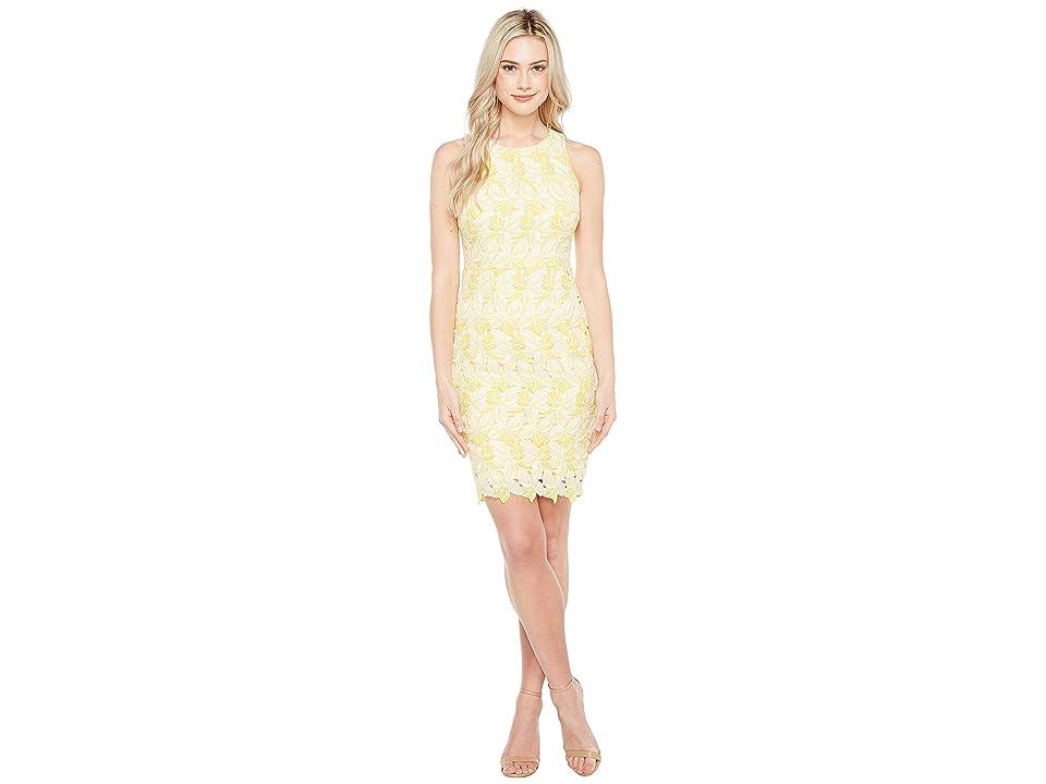 c4169379389 Maggy London Star Flower Lace Scalloped Sheath Dress (Yellow White) Women