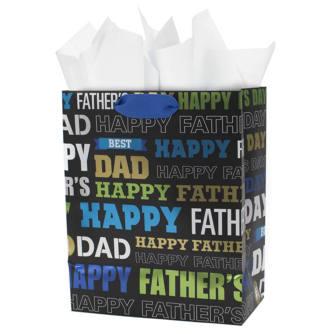 Hallmark Medium Father's Day Gift Bag with Tissue Paper (Dad Words)