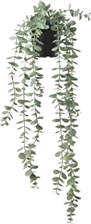 """Digital Shoppy IKEA Artificial Potted Plant, in/Outdoor Hanging, Eucalyptus, 9 cm (3 ½"""")"""