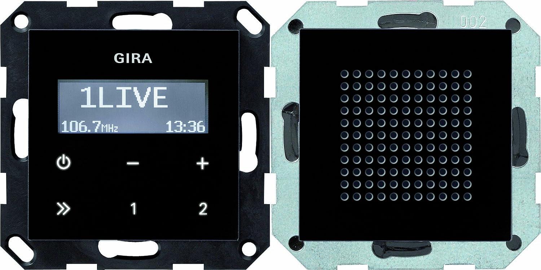 Gira 20 Unterputz Radio RDS System 20, schwarzglasoptik