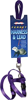 MARSHALL PET PRODUCTS 572018 Ferret Harness & Lead Purple, 48 in