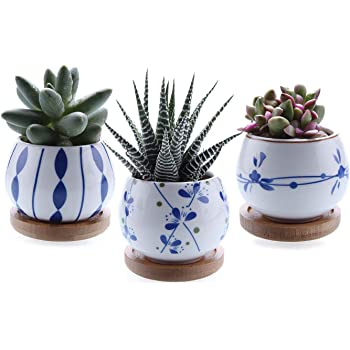 T4U 2.5 Inch Ceramic Succulent Planter Pot with Bamboo Saucer Set of 3, Cactus Plant Pot Flower Pot Container Planter Gift for Mom Sister Aunt Home Office Decoration