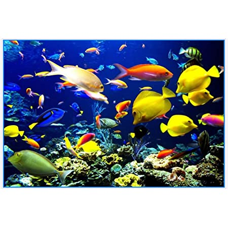 Adhesive for port-between Tropical Fish-sticker Coating Film doors