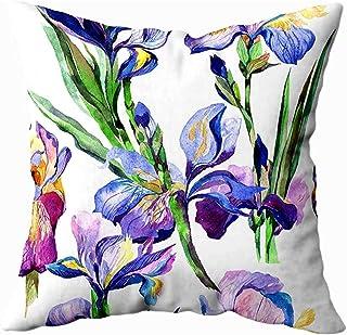Ducan Lincoln Pillow Case 2PC 18X18,Funda De Almohada Suave,Fundas De Almohada De Tiro Cuadrado,Patrón De Flor De Iris De Flores Silvestres En Acuarela Nombre Completo The Plant Aquarelle Wild