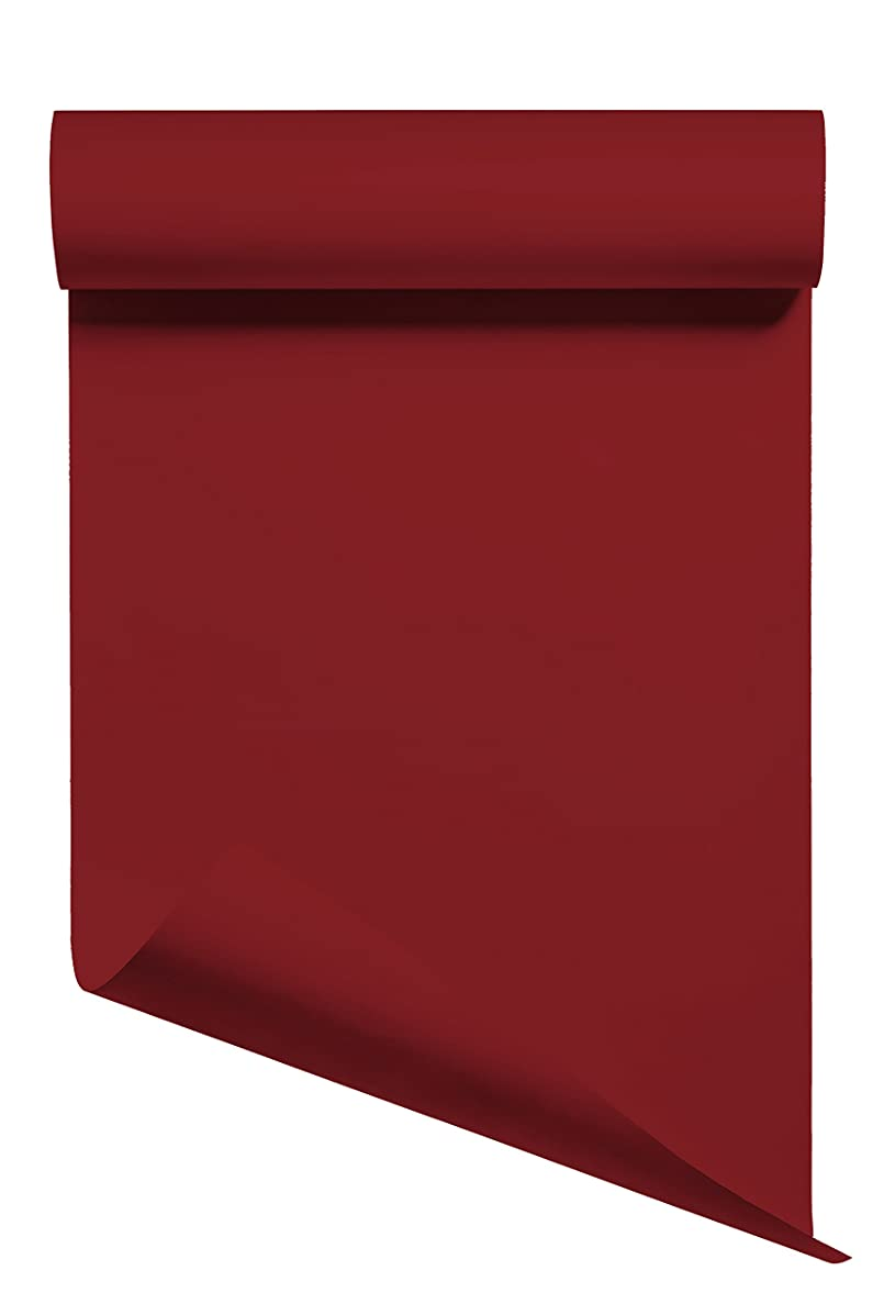 Heat Transfer Vinyl HTV/Iron-on 12 Inches by 5 Feet Roll (Cardinal Red)