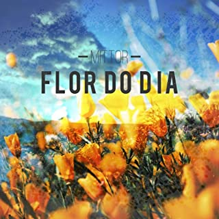 Best flor do dia Reviews