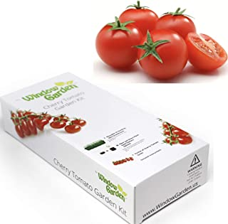 Garden Starter Kit (Cherry Tomato) Grow a Garden by Seed. Germinate Seeds on Your Windowsill Then Move to a Patio Planter or Vegetable Patch. Mini Greenhouse System Makes it Foolproof, Easy and Fun.