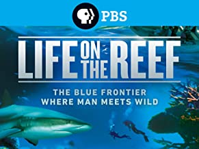 Best life on the reef Reviews