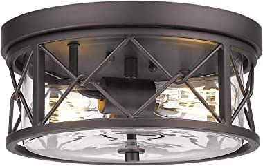 Zeyu 2-Light Flush Mount Ceiling Light, 12 Inch Kitchen Light Fixtures Ceiling with Clear Glass Cover, Oil Rubbed Bronze Fini