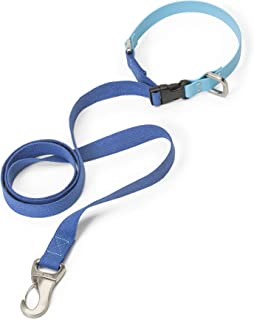 West Paw Jaunts Dog Leash with Comfort Grip, Small, Made in USA