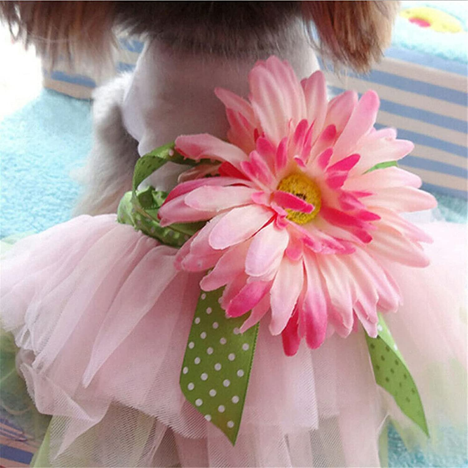 MDKAZ Clothes for Pets Cute Dog Puppy Pet Party Recommendation Popular brand in the world Skirts D