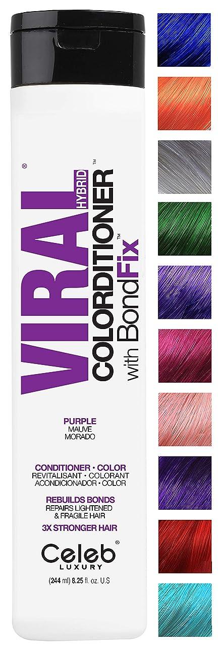 ペインギリック霜指紋CELEB LUXURY セレブラグジュアリーウイルスColorditioner:カラー堆積コンディショナー、BondFixボンド再建、10の鮮やかなパステルカラーは、フェード、コンディショナー+鮮やかな色、残酷フリー、100%ビーガンを停止します 紫の