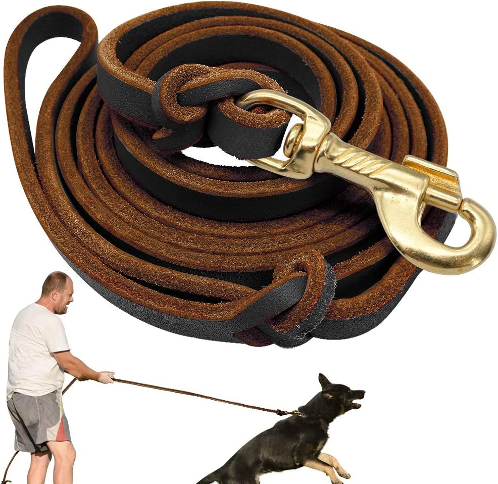 outlet Didog Genuine Leather Dog service Leashes Training 8 Foot Professional