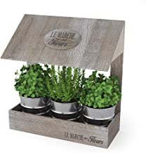 Amazon.es: KITS DE HUERTO URBANO