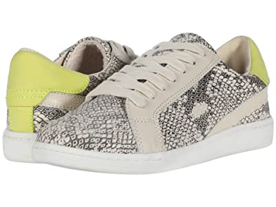 Dolce Vita Nino (Stone Snake Print Leather) Women