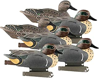 Best banded blue winged teal decoys Reviews